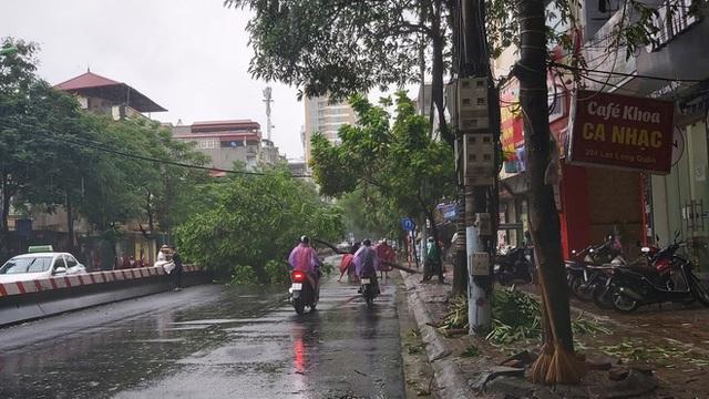 Hà Nội mưa lớn, nhiều ô tô bị cây đè bẹp - Ảnh 4.