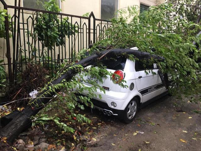 Hà Nội mưa lớn, nhiều ô tô bị cây đè bẹp - Ảnh 7.