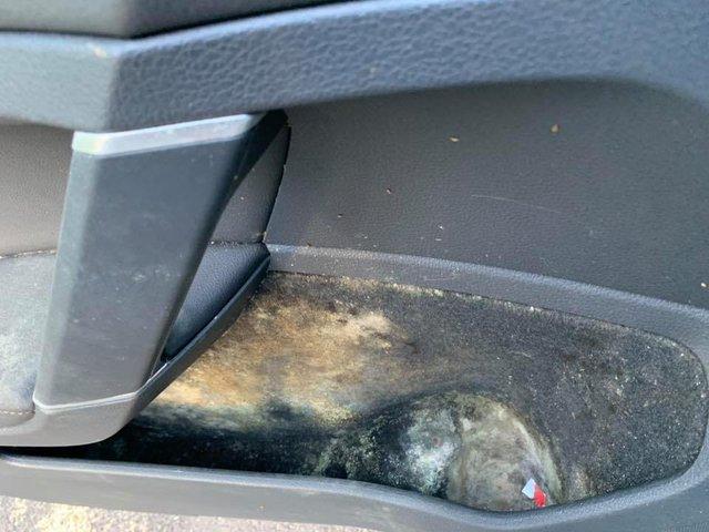 Bái phục xem hãng vệ sinh chuyên nghiệp hồi sinh xe như từ cõi chết trở về - Ảnh 7.