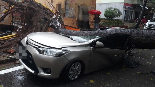 Chiếc xe ô tô bị cây đổ đè bẹp, biến dạng trong cơn mưa lớn ở Hà Nội - Ảnh 3.