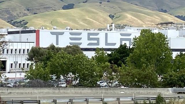 Ép nhân viên đi làm mùa dịch, Tesla bị chính quyền 'sờ gáy' nhưng bất đồng nội bộ còn đáng chú ý hơn