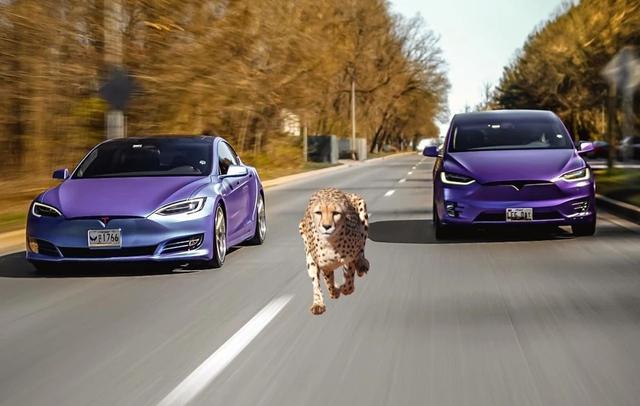 Những bài học thoát khủng hoảng của Tesla mà các ông lớn ngành xe cũng nên tham khảo - Ảnh 10.
