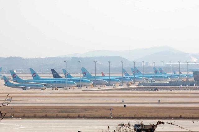 La liệt máy bay nằm không tại sân bay trên khắp thế giới - Ảnh 6.