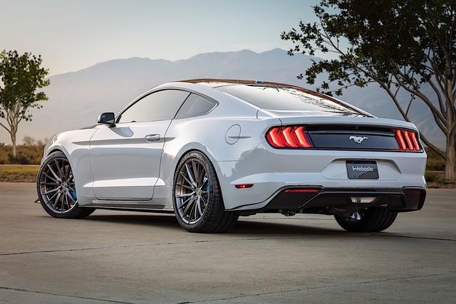 Ford Mustang sẽ có bán tải và cả coupe 4 cửa đấu Porsche Panamera - Ảnh 1.