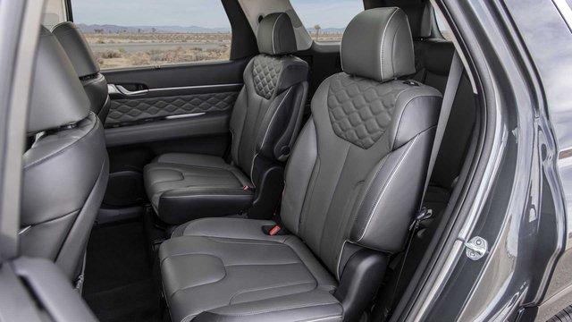 Xe hot Hyundai Palisade bị khách hàng kêu la nội thất bốc mùi - Ảnh 3.