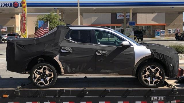 Lãnh đạo Hyundai lỡ lời tiết lộ kích thước bán tải Santa Cruz trái ngược mọi tin đồn - Ảnh 1.