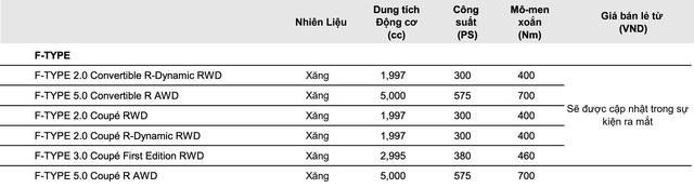 Jaguar F-Type 2021 đầu tiên về Việt Nam: Xe chơi giá chục tỷ, mạnh ngang siêu xe - Ảnh 6.