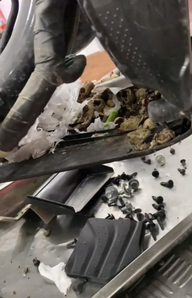 Hoảng hồn trước hình ảnh đống rác khổng lồ nằm trong xe tay ga, cảnh tỉnh hội chị em về một thói quen xấu đầy nguy hại - Ảnh 3.