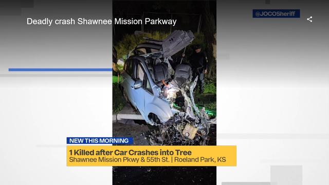 Tai nạn khó tin: Xe Ford bị xẻ làm đôi theo chiều dọc, mọi thứ không thể cứu vãn - Ảnh 2.