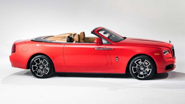 Vợ chồng nhà người ta kỷ niệm ngày cưới bằng 2 chiếc Rolls-Royce hàng thửa siêu hiếm - Ảnh 8.