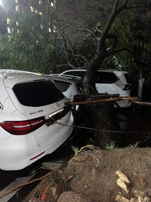 Hy hữu màn đỡ cây đổ đầy xót xa trong đêm mưa lớn tại Hà Nội: Lexus LX 570 giá chục tỷ bẹp rúm nóc xe - Ảnh 2.