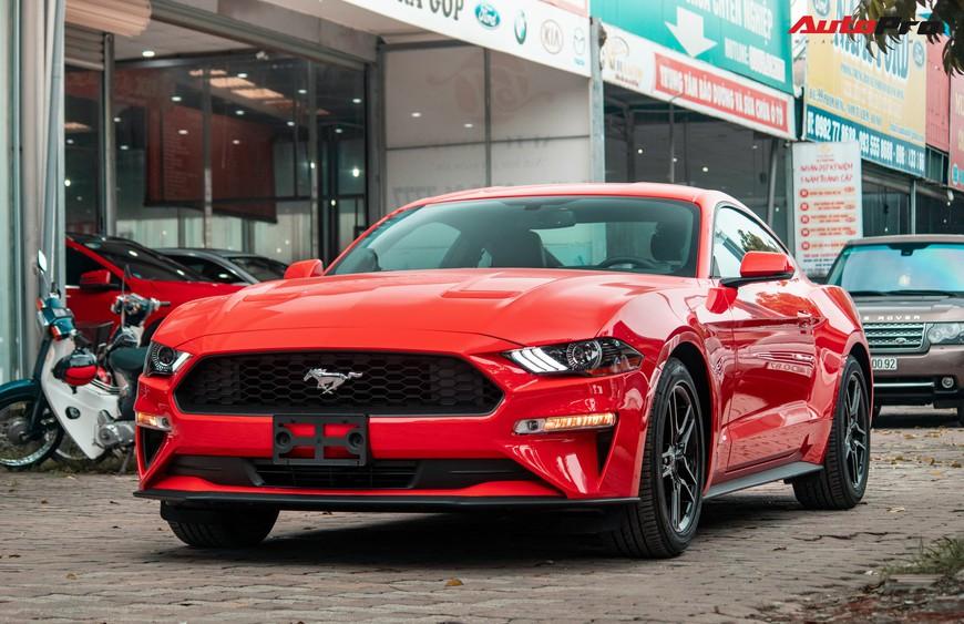Mục sở thị xe cơ bắp Mỹ Ford Mustang Ecoboost Premium 2019 giá hơn 3,1 tỷ đồng đầu tiên về Việt Nam - Ảnh 1.
