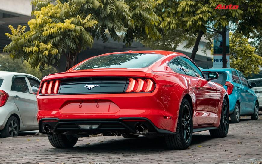 Mục sở thị xe cơ bắp Mỹ Ford Mustang Ecoboost Premium 2019 giá hơn 3,1 tỷ đồng đầu tiên về Việt Nam - Ảnh 2.