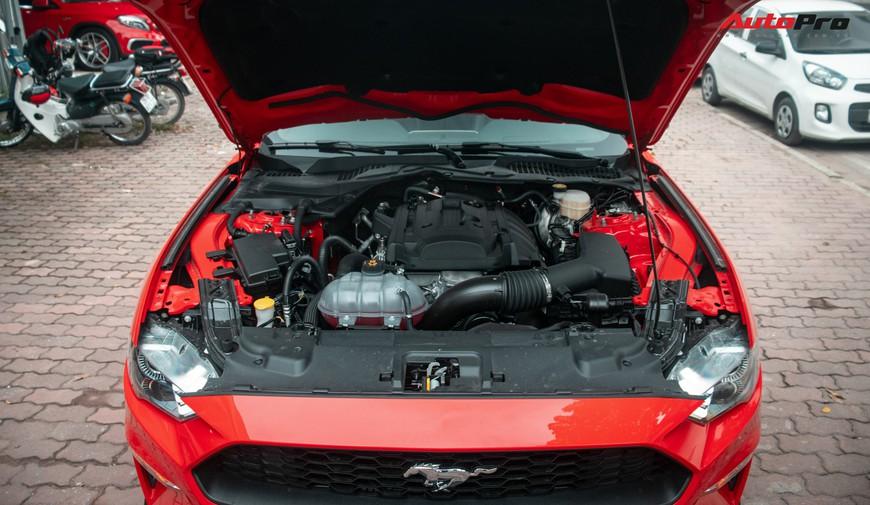 Mục sở thị xe cơ bắp Mỹ Ford Mustang Ecoboost Premium 2019 giá hơn 3,1 tỷ đồng đầu tiên về Việt Nam - Ảnh 7.