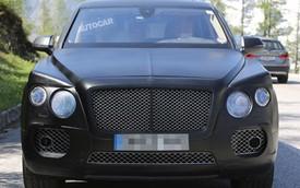 Bentley SUV sẽ đắt hơn BMW X5 và Range Rover