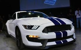 "52.995 USD cho một ""chú ngựa hoang"" Ford Mustang Shelby GT350"
