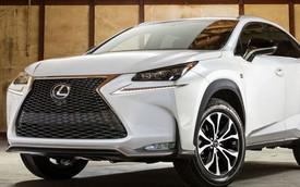 Sẽ không có Lexus NX phiên bản tính năng cao