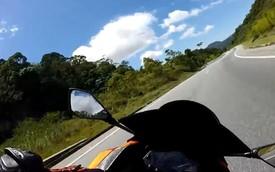Kawasaki Ninja 300 đua với Honda CB1000R và gặp nạn