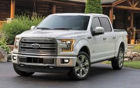 Xe bán tải hạng sang Ford F-150 Limited 2016 có giá gần 62.000 USD