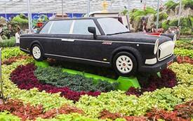 """Độc đáo với """"Rolls-Royce Trung Quốc"""" làm từ hàng nghìn hạt đậu"""