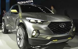 Xe bán tải Hyundai Santa Cruz có thể được sản xuất đại trà