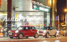"""Dàn """"tuần lộc"""" Mini Cooper gây ấn tượng trên phố Sài thành"""