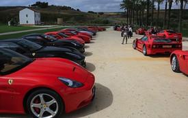 """""""Hạm đội"""" 50 siêu xe Ferrari tham gia ngày hội Targa Florio"""