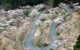 20 con đường tuyệt đẹp khiến các tay lái muốn chinh phục ngay (P1)