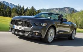 """Phụ nữ """"phát cuồng"""" vì ngựa hoang Ford Mustang"""