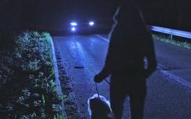 Đèn hồng ngoại siêu thông minh của Ford, rẻ hơn và hiệu quả không kém đèn laser của Audi