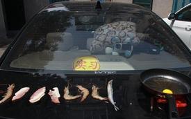 Trung Quốc nóng kỷ lục, người dân nướng tôm và thịt trên cốp xe