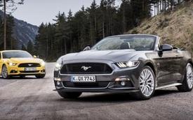 """Ford Mustang đại thắng trên """"sân nhà"""" của những chiếc xe thể thao Đức"""
