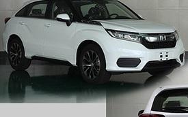 SUV 5 chỗ Honda Avancier có thêm phiên bản giá rẻ hơn