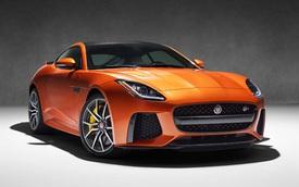 """Jaguar F-Type SVR - """"Báo gấm"""" đúng nghĩa"""