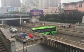 """Cư dân mạng """"phát cuồng"""" với màn quay đầu hoàn hảo của xe buýt trên đường hẹp"""