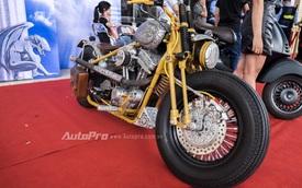Gặp gỡ Harley-Davidson điêu khắc hoa văn thủ công độc nhất Hà Thành