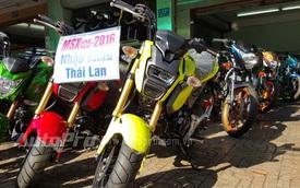 Honda MSX125 SF 2016 đầu tiên cập bến Việt Nam, giá từ 98 triệu Đồng