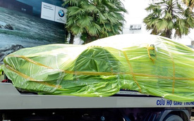 Xe đua của BMW về Việt Nam
