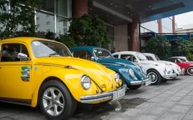 """Volkswagen Beetle - """"Con bọ"""" có sức sống mãnh liệt"""