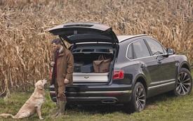Bentley Bentayga Field Sports - SUV siêu sang dành cho dân thích đi săn