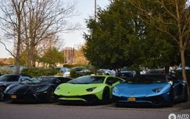 Cặp đôi siêu xe hàng hiếm Lamborghini Aventador SV khoe dáng cùng nhau