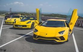 [Ảnh đẹp] Lamborghini Aventador S cùng dàn siêu xe diễu hành tại Phan Thiết