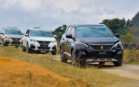 """Chuyển sang thế hệ mới, Peugeot 5008 và 3008 thoát """"ế"""""""