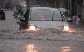 Chủ showroom xe cũ và thợ kỹ thuật lành nghề mách cách tránh mua xe ngập nước