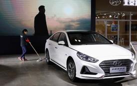 Hyundai - Ngôi sao chóng nổi sớm tàn và con phượng hoàng đang trên đà hồi sinh