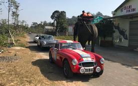 Hành trình 8 ngày rong ruổi Việt Nam trước Tết của đoàn xe cổ Anh Quốc