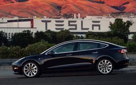 """Model 3 chậm trễ vì """"Tesla quá cẩu thả trong sản xuất và kiểm định linh kiện"""""""