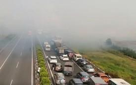 Toàn cảnh bãi rơm tạo khói mù mịt được cho là nguyên nhân gây tai nạn liên hoàn trên cao tốc Long Thành - Dầu Giây