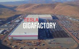 Tesla xây siêu nhà máy 500.000 xe/năm tại Trung Quốc