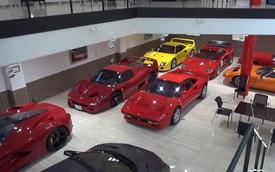 Góc éo le: Bộ sưu tập Ferrari đồ sộ của nhà sưu tập với cái tên đậm chất Lamborghini